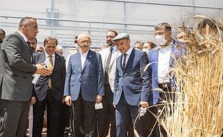 """Kılıçdaroğlu üreticilerle buluştu: """"Koskoca Tarım Bakanlığı'nın yapamadığını seçtiğiniz başkan yapıyor"""