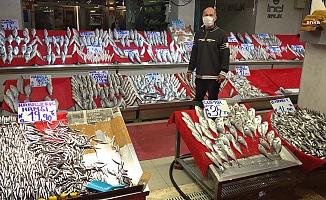 Balık Fiyatları, Kırmızı Etle Yarışıyor