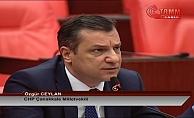 CHP'li Ceylan'dan  Tarım ve Orman Bakanını Terleten Sorular!