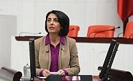 Kayışoğlu, Suriyeli çocukların dramını Meclis'e taşıdı