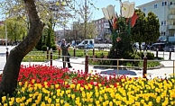 AKP'li belediye laleye 3 milyon lira harcadı